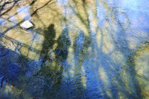shadows and reflections at Kington