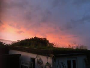 sunset over studio