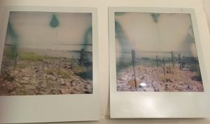 Polaroid pictures of a fence at black rock nature reserve that goes from beach into the sea